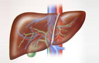 Manipulación-del-hígado-en-osteopatia