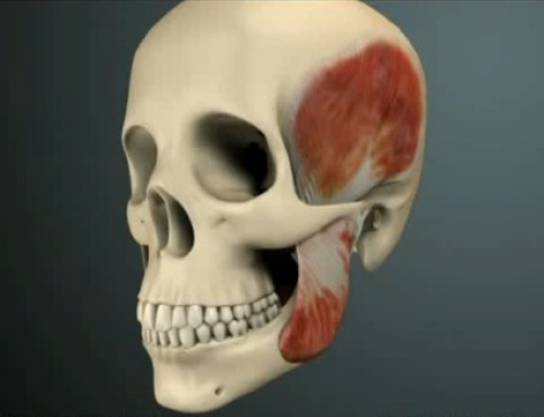 Occlusion Dentaire, Bruxisme et Ostéophatie